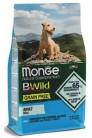 Monge Dog BWild GRAIN FREE Mini с анчоусом