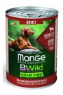 Monge Dog BWild GF ADULT-Lamb