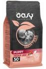 Oasy Dry Dog Grain Free Puppy Medium/Large Turkey