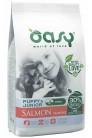 Oasy Dry Dog OAP Puppy Mini Salmone