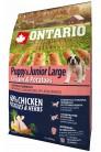Ontario Puppy&Junior Large Chicken&Potatoes 2.5 kg